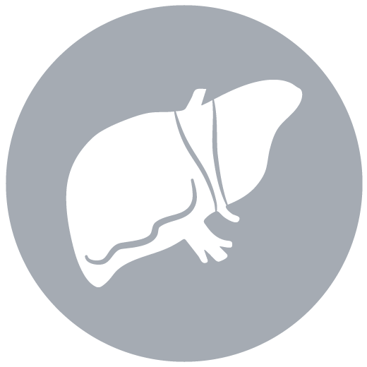 Image result for healthcare liver icon